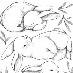 Stickers chambre enfant Trois lapins blanc Lilipinso