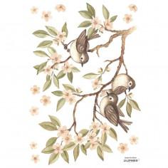 Sticker enfant branche fleuries et moineaux Lilipinso