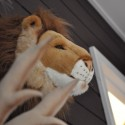 Déco murale enfant peluche tête de Lion